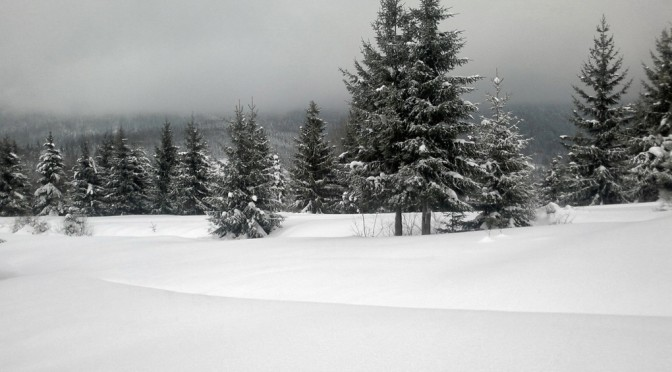 Bežky a lyže v okolí Terchovej